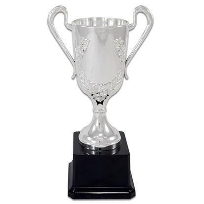 Picture of Gümüş Ödül Kupası