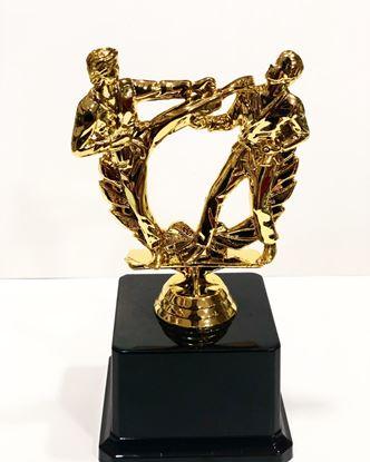 Picture of Yılın Dövüş Sanatı Oscarı Plastik Altın Sarısı