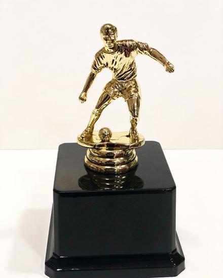 Picture of Yılın Futbolcu Oscarı Plastik Altın Sarısı