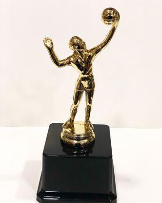Picture of Yılın Voleybolcu Oscarı Plastik Altın Sarısı